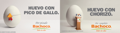 Bachoco theblogbox